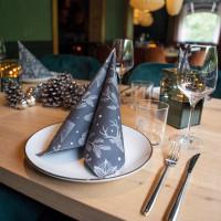 Servietten Winter | große Auswahl | Top Preise | hantermann.eu